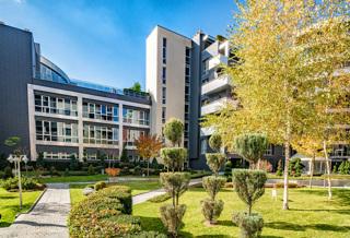 Este Home & Spa garden